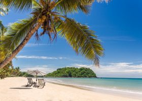 Beautiful tropical sandy beach with palm trees and loungers
